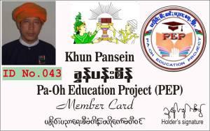 pansein